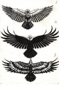28 Trendy Tattoo Geometric Animal Eagle Eagle Tattoo Small Eagle Tattoo Arm Tattoo