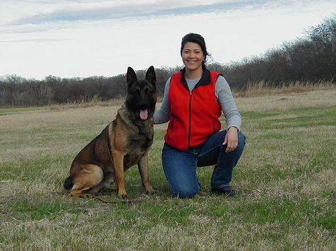 This Is The Police Dog I Trained In School For The Round Rock