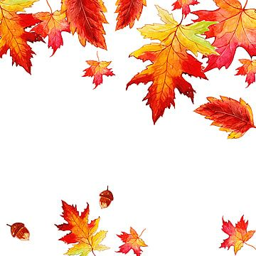 Beautiful Watercolor Autumn Leaves Background Maple Leaf Clipart Maple Leaf Orange Png And Vector With Transparent Background For Free Download Maple Leaf Drawing Watercolor Autumn Leaves Autumn Leaves Wallpaper