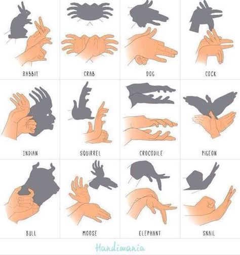 Schattenspiel Mehr puppets Shadow forms made by hand Shadow Puppets With Hands, Hand Shadows, Things To Do When Bored, 1000 Life Hacks, Shadow Art, Shadow Play, Babysitting, Kids And Parenting, Summer Fun