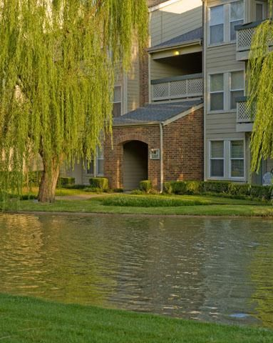 Love the manicured grounds at Vista Shadow Mountain Apartments in ...