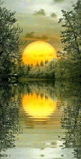 16e125a99e49b1fa76f259e62c59e7d9.gif (285×558)   Красота природы   Постила