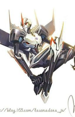 Transformers One-shots (Decepticons) | Human transformer