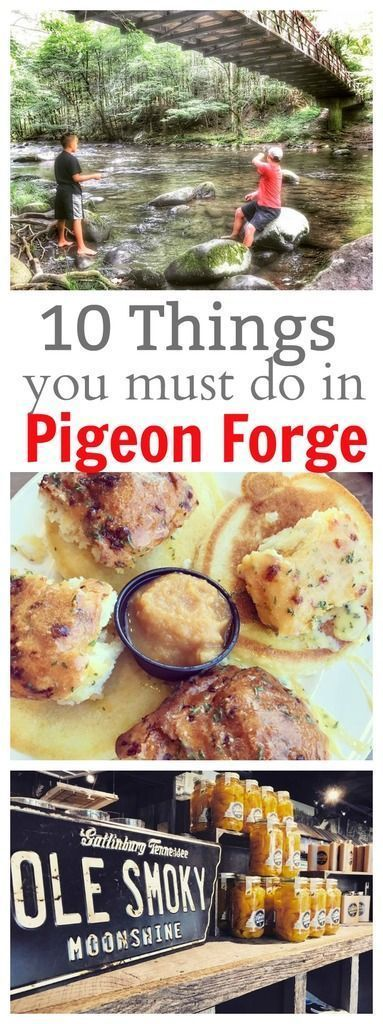 27 best Ideas camping places in tennessee pigeon forge Gatlinburg Vacation, Tennessee Vacation, Gatlinburg Tn, Gatlinburg Tennessee Restaurants, Tennessee Attractions, Gatlinburg Attractions, Pigeon Forge Restaurants, Pigeon Forge Attractions, Pigeon Forge Tennessee