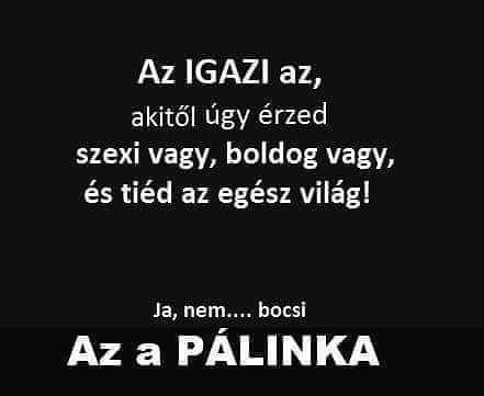 pálinkáról szóló idézetek 😂🤔😂 #instahun #magyar #poén #instamania #iközösség #humoros