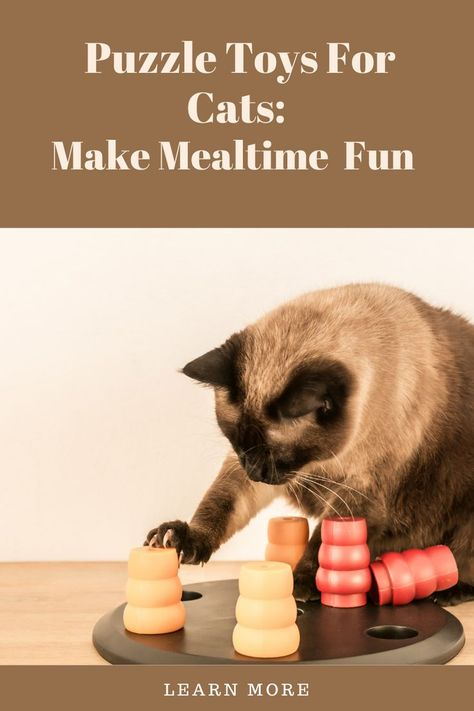 Puzzle Toys for Cats: Make Mealtime Fun