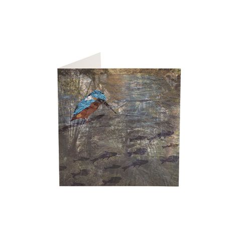 Kingfisher Greeting Card Greeting Cards Cards Kingfisher