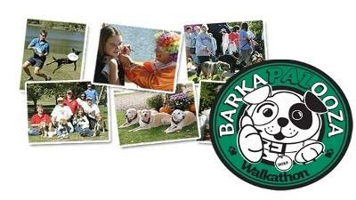 Barkapalooza: What to know before adopting a dog! #video