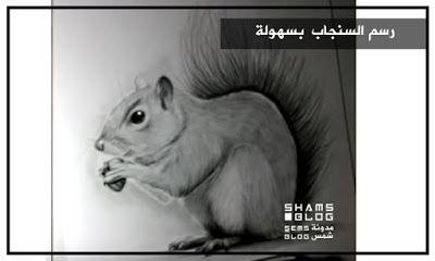 مدونة شمس تعلم رسم السنجاب سهولة Blog Posts Blog Art