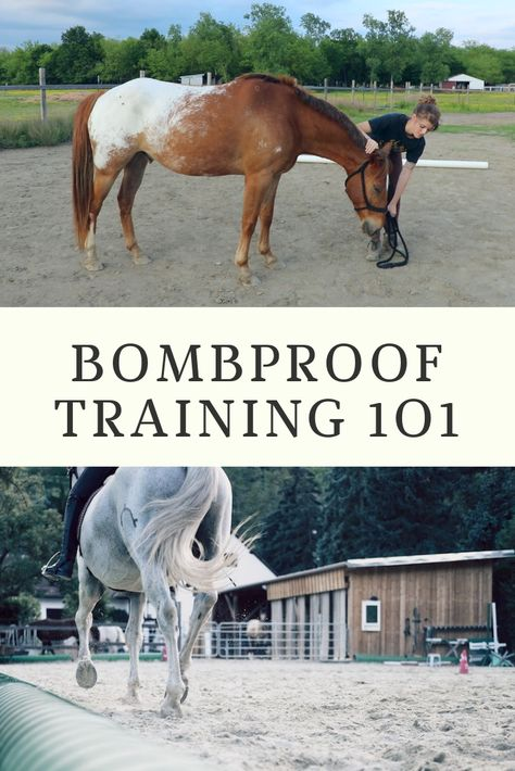 Bombproof Horse Training Have a spooky horse? Bombproof training is the solution! Here's our complete guide for bombproofing a horse. Horse Training Tips, Horse Tips, Horse Exercises, Training Exercises, Equestrian Outfits, Equestrian Style, Equestrian Fashion, Horse Fashion, Equestrian Problems
