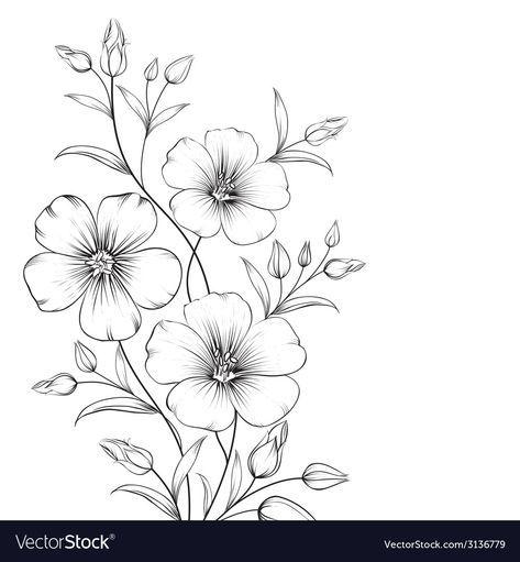 Linum Flower Vector Image On Flower Sketches Easy Flower