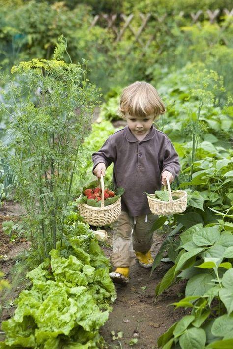 Country kids in the garden gardening photography, red cottage, green garden,