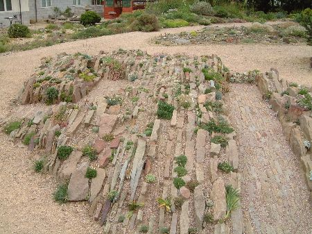 Crevice Garden Construction | Garden And Stuff | Pinterest | Gardens, Garden  Ideas And Alpine Plants
