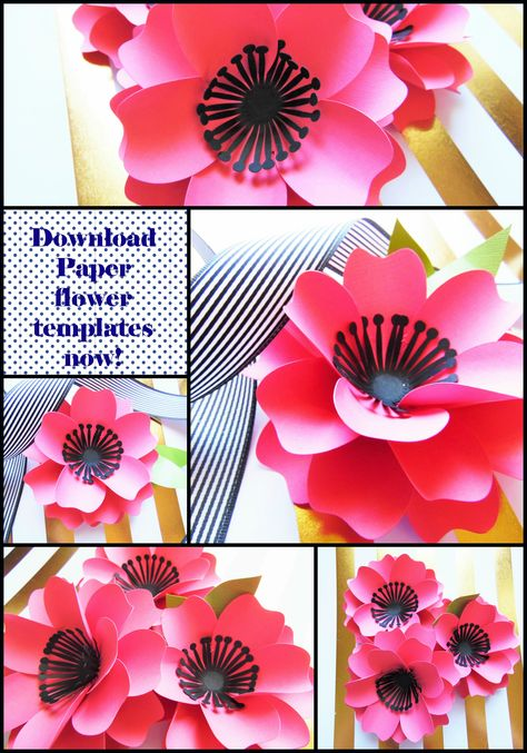 Lots Of Paper Flower Templates For Download Plus Instructions
