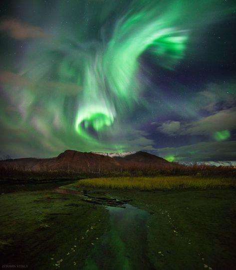 Image result for Aurora