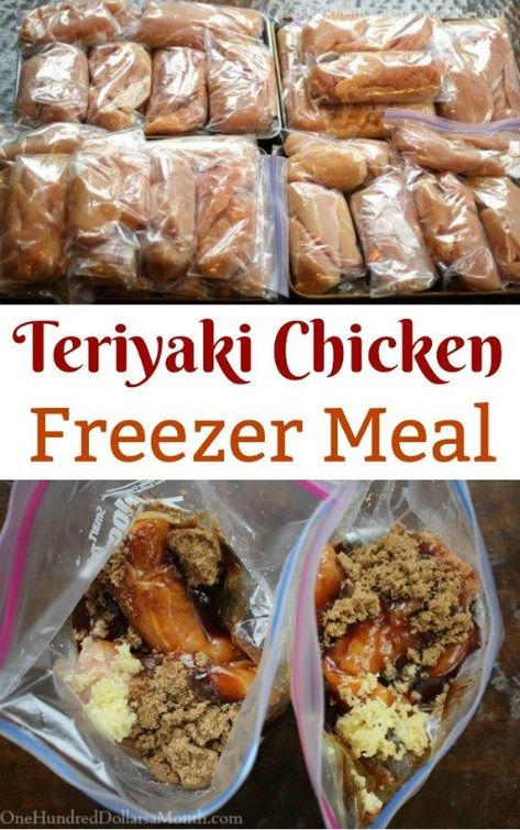 Freezer Meals - Teriyaki Chicken - One Hundred Dollars a Month 30 Healthy Meals for the Freezer: Mouth-Watering Make Ahead Freezer Recipes That Make Life So Much Easier - Word To Your Mother Chicken Freezer Meals, Freezer Friendly Meals, Budget Freezer Meals, Dump Meals, Frugal Meals, Chicken Recipes To Freeze, Premade Freezer Meals, Freezable Meals, Make Ahead Freezer Meals