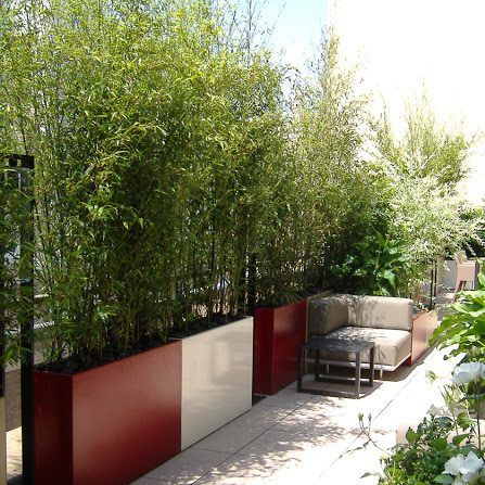 Image In Terrasse Montaine Jardiniere Fin Et Haute Formant Un