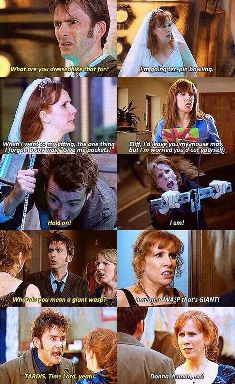 The best of Donna Noble. She was definitely one of my favorite companions, and had some of the best lines too.