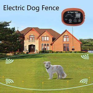 Top 12 Best Invisible Dog Fences In 2019 Reviews Dog Fence Invisible Fence Pet Containment Systems