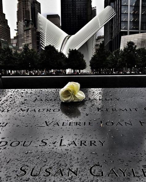 ✔pictame webstagram 🔥🔥🔥 Instagram post by @maryellen_jordan | Birthdays of WTC 911 victims are commemorated with a rose. 😢  #911memorial #wtc #wtcmemorial #wtc #worldtradecenter #worldtradecentermemorial #occulus #nyc #nycphotography #nycphotographer #nyclife #newyorkcity #newyork_instagram #newyorknewyork #rain #rose #manhattan #iloveny #ilovenewyork #ilovenyc #i❤️ny #lowermanhattan #iphonephoto #iphonephotography | 🔥GPLUSE.CLUB