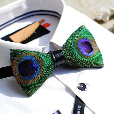 2 American Gentleman Tiny Tie Mens Polyester Silk Wide Ties National Bow Tie Day Beautiful Peacock Feathers