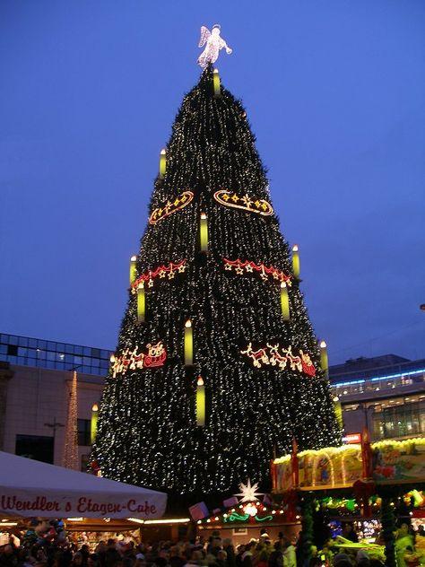 Größter Tannenbaum Deutschlands.Pinterest