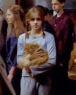 How cute is Hermione in this deleted scene from The prisoner of Azkaban. <<this isn't a deleted scene. It was when the trio and Ron's family were going out on the station and I remember that it WAS in the films. Harry Potter Hermione, Images Harry Potter, Mundo Harry Potter, Harry Potter Tattoos, Ginny Weasley, Harry Potter Universal, Harry Potter Characters, Harry Potter Fandom, Harry Potter World