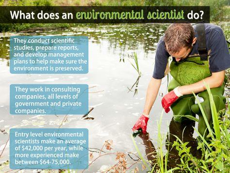 40 best Environmental Jobs in Canada images on Pinterest Career - environmental engineer job description