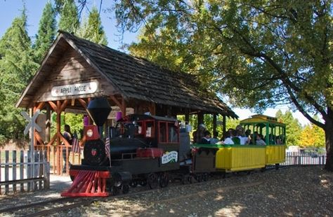 Hillside Tree Farm Camino Ca Weekend Getaway California Apple Hill California Train Rides