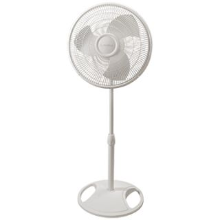 "Lasko 16/"" Oscillating Stand Fan Blk"