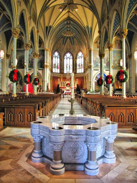 Cathedral of St. John the Baptist, Savannah, Georgia-beautiful church, especially in person!