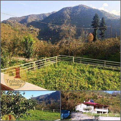بيوت للبيع في تركيا طرابزون Beautiful Gardens Outdoor Farmland