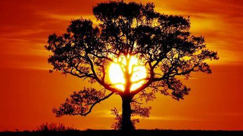 Paysages Nature Paysage Coucher de soleil étoile rouge soleil grand poster print