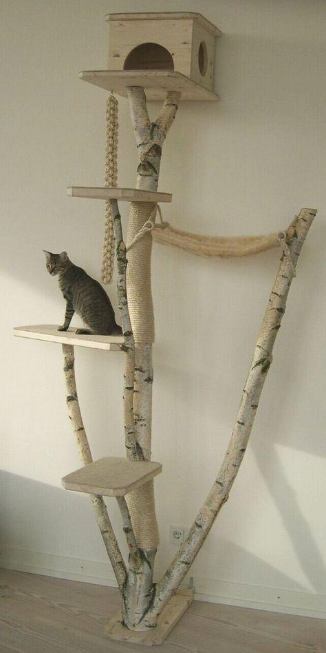 enfin un arbre à chat qui embellit le salon !!! http://www.kratzbaum-city.de/images/Fotosammlung3/01.jpg