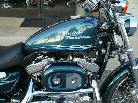 Harley Davidson Paint Colors   2001 Harley Davidson Sportster 1200