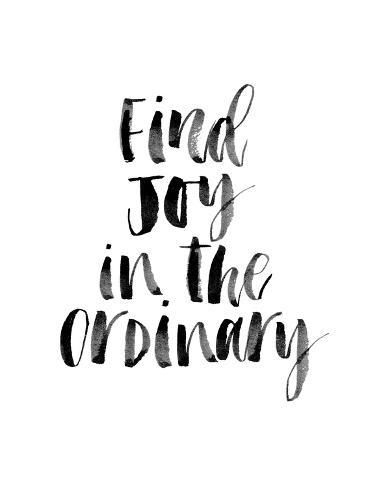 Giclee Print: Find Joy in the Ordinary by Brett Wilson : 24x18in