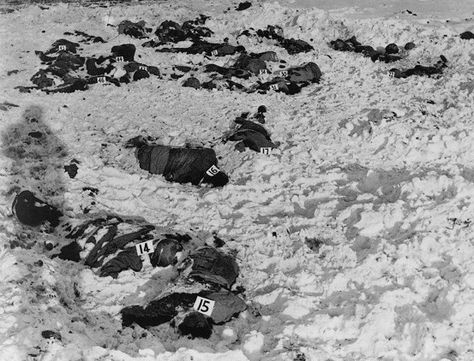 81 dead American soldiers of the 285th Field Artillery Observation Battalion, murdered by Waffen SS troops,  December 17, 1944, during the Battle of the Bulge near the Belgian town of Malmedy.  These Americans were killed after they surrendered.