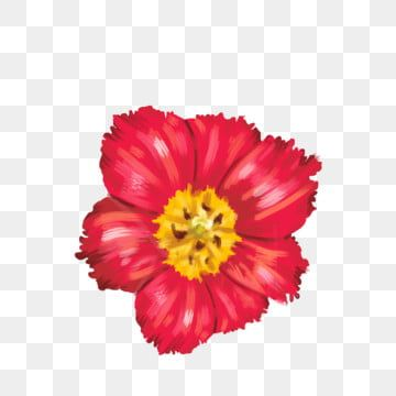 Hand Painted Small Red Flower Free Buckle Can Be Used For Commercial Materials Hand Drawn Flower Material Flower Flowers Png Transparent Clipart Image And Ps Flower Drawing Hand Drawn Flowers Red