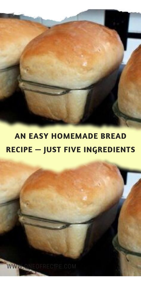An Easy Homemade Bread Recipe — Just Five Ingredients – One Of Recipe - New Site Easiest Bread Recipe No Yeast, No Yeast Bread, Yeast Bread Recipes, Cornbread Recipes, Jiffy Cornbread, Easy Homemade Bread Recipes, Salt Bread Recipe, Bread Baking, Homemade Sandwich