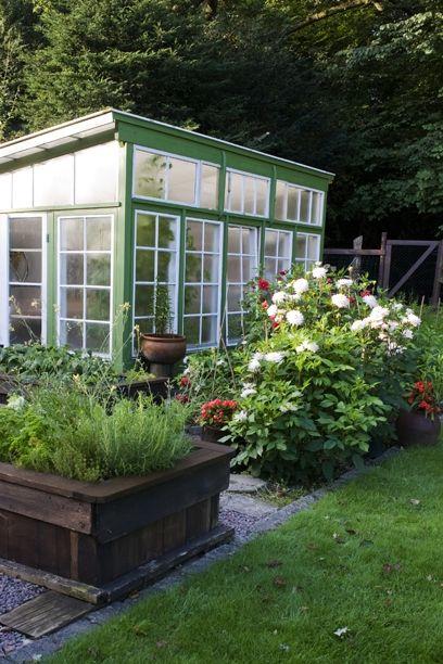Vil du gøre noget godt for dig selv og dit hjem, så indret med planter – og vælg de planter, der passer bedst til de enkelte rum. Få tips til at finde de bedste planter her!