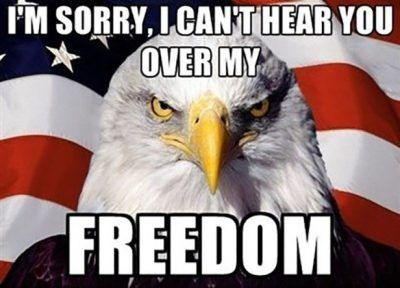 60 Funny Happy 4th Of July Memes Jokes Gif S 4th Of July Meme 4th Of July Images Fourth Of July Quotes