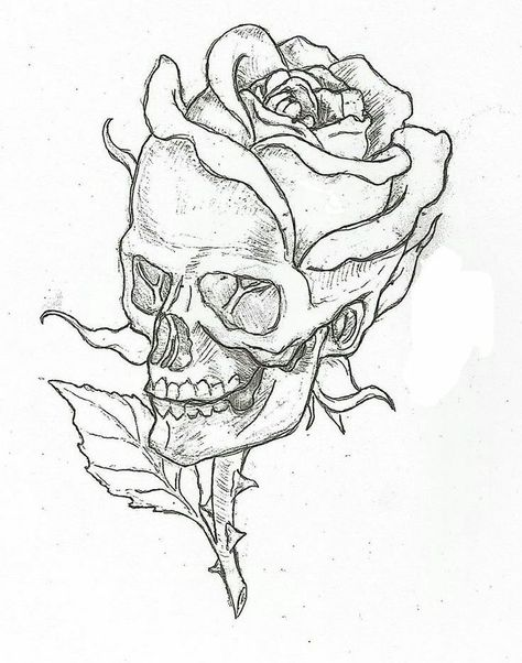 Simple skulls and roses drawings easy skull drawings, simple skull drawing, rose drawings, Cool Art Drawings, Art Sketches, Drawings Of Skulls, Drawing Pictures, Tattoo Sketches, Drawings About Love, Cool Simple Drawings, Simple Drawings For Beginners, Cool Drawings Tumblr