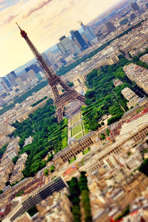Photograph Parisian TS by Alexandra (Petrova) & Bharath Wootla on 500px