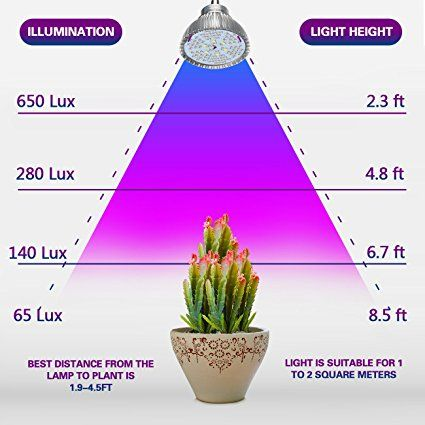 Pin By Led Grow Light On Led Grow Light By Watt Led Grow Lights Grow Lights Lights