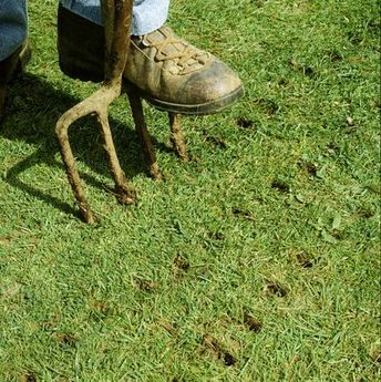 Why And When You Should Aerate Your Lawn Lawn Repair Lawn