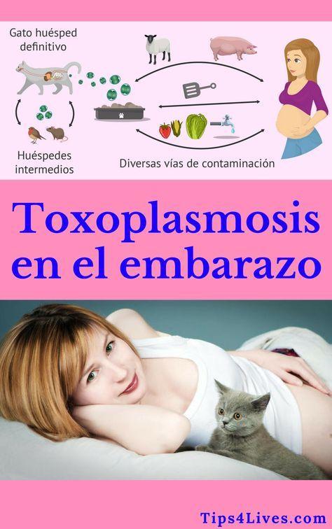 toxoplasmosis y lactancia materna