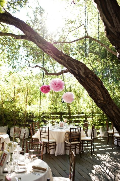 Romantic reception tables in the trees. Photography by http://www.nextexitphotography.com/