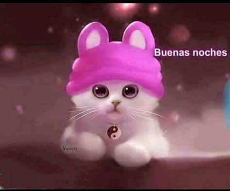 Garito con la gorra rosa de conejito