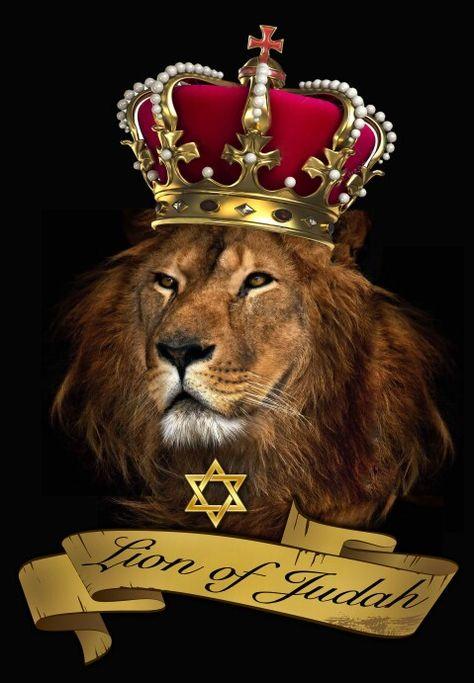 единственная российская картинка на обои лев в короне самые
