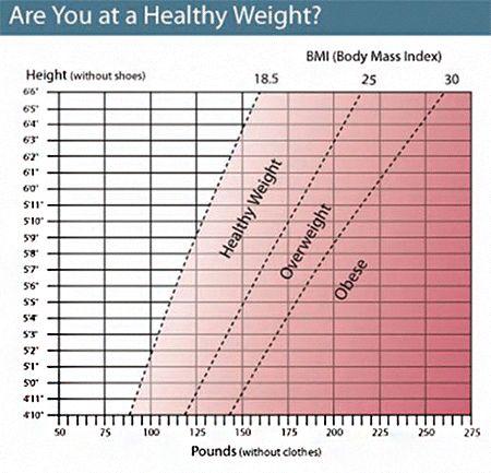 Tabla Del Indice De Masa Corporal  Antropometria